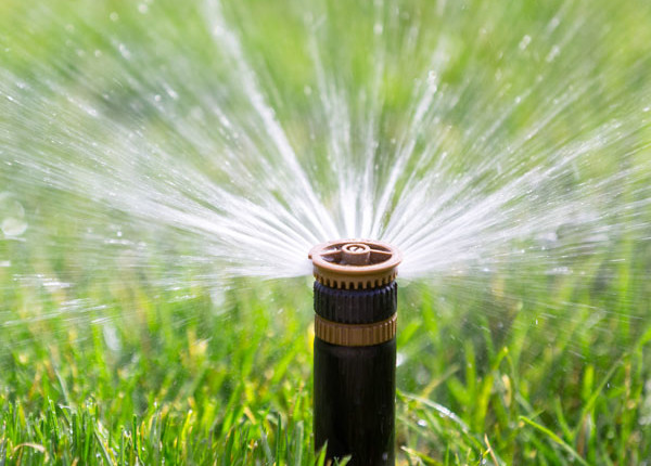 Sacramento Bests LA in Water Conservation