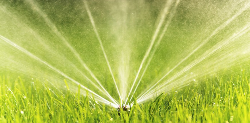 The Best Rain Sensors for Your Lawn
