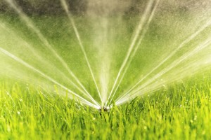 Sprinkler repair and low flow sprinkler heads in Sacramento